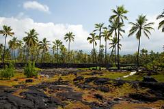 Place of Refuge, Hawaii (Big Island) (Roger Gerbig) Tags: placeofrefuge puuhonuaohonaunau puuhonuaohonaunaunationalhistoricalpark kona hawaii bigisland island rogergerbig canoneos5dmarkii canonef24105mmf4lisusm 3219