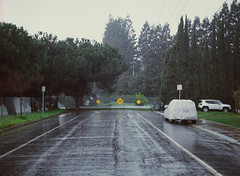 Sunnyvale, California (bior) Tags: pentax645nii pentax645 6x45cm ektachrome e200 kodakektachrome slidefilm mediumformat 120 sunnyvale street residential suburbs rain deadend