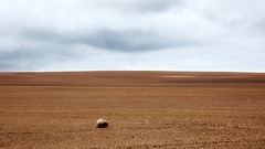 The Void (Bernd Walz) Tags: field fields soil space vastness nothingness emptiness void agriculture rural countryside transformedlandscape artificiallandscape fineart minimalistic minimalism