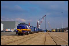 Railexperts 1251, Amsterdam Houtrakpolder 07-03-2018 (Henk Zwoferink) Tags: amsterdam noordholland netherlands raillogix henk zwoferink railexperts 1251 6703 nunner china shuttle yiwu
