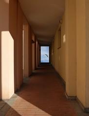 ristrutturazione (fotomie2009) Tags: savona portico moderno montaggio porticato photomontage fotomontaggio liguria italy italia architecture architettura modern moderna brown sky metafisica columns