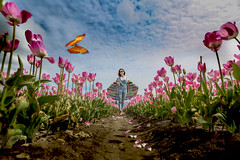 Tulip Season (Photo Alan) Tags: vancouver canada tulip tulipfield tulipfestival people butterfly