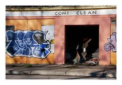 Come (TooLoose-LeTrek) Tags: detroit abandon decay graffiti