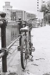Abandoned bike 2 (vickyhindle) Tags: canoneos3 canonef50f14 neopan400cn blackwhite 35mmfilmphotography
