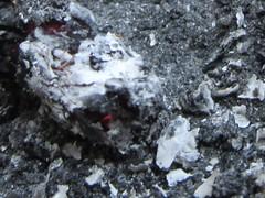 Fire (LookaroundAnne) Tags: fire ash glow macro macromondays fourelements burning