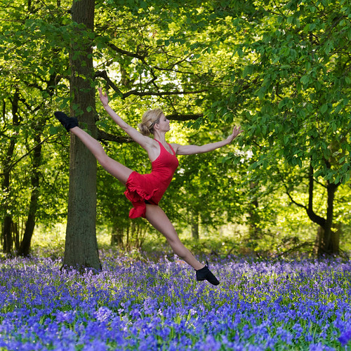 Dances with bluebells # 8