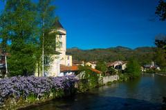 Oust (Ariège) (PierreG_09) Tags: ariège pyrénées pirineos couserans occitanie midipyrénées coursdeau ruisseau rivière torrent oust garbet glycine tour