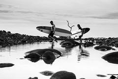 Fuera del agua, no soy nada (Osei Casanova) Tags: nikond750photography landscape beachlife beachliving surflife surf nikonphotographer picoftheday landscapephotography bw blackandwhite beach bestoftheday grayscale outdoors photooftheday nikonphotography surfing centralamerica osecd america osei surfboard elsalvador