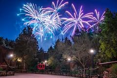 Fireworks over Baatu 5_3_2019 (Domtabon) Tags: disneyland dl dlr disney disneylandresort fireworks mousewait
