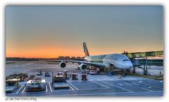 Emirates Airbus A380-861 A6-EOJ (MK|PHOTOGRAPHY) Tags: emirates airbus a380861 a6eoj aviation flugzeug aircraft speziallackierung specialpaint expo2020dubailiverygreen sonnenaufgang sunrise capitalinternationalairport peking beijing china pentax k1 hdpentaxdfa1530mmf28edsdmwr matthias körner mattkoerner1 mk|photography