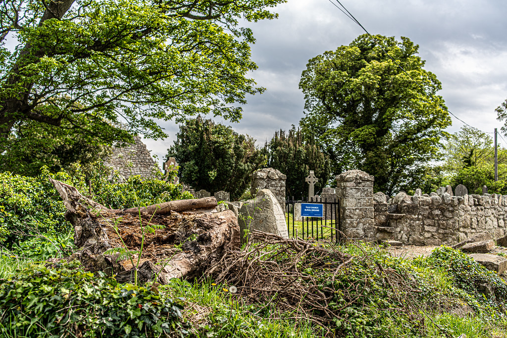 TULLY CHURCH AND CHURCHYARD [LEHAUNSTOWN LANE DUBLIN]-152329