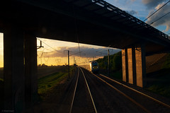 Bridge Of Light (sdupimages) Tags: light sunset goldenhour lumière bridge pont pov perspective voieferrée railroad tgv lgv ln3 e320 eurostar train