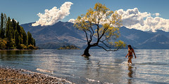 Enjoying Lake Wanaka (OJeffrey Photography) Tags: swimmer wanakawillow willow lakewanaka sunbather panorama pano ojeffreyphotography ojeffrey jeffowens newzealand southisland wanaka nikon d850