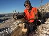 Colorado Mule Deer Hunt Mahogany 10