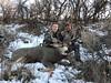 Colorado Mule Deer Hunt Mahogany 2