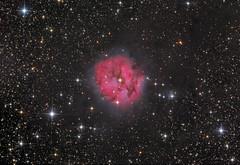 Cocoon Nebula - IC5146 (Astrolights.de) Tags: cocoonnebula ic5146 zwoasi183mmpro astrophotography caldwell19 sh2125 barnard168 collinder470