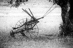 old farm stuff (Mark.Swanson) Tags: farm ranch equipment implement utopia texas