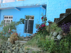 IMG_8290 (belight7) Tags: blue house home garden flowers tso pema walk village himachal india rewalsar nature