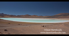 Beautiful Laguna Tuyajto on the altiplano, Atacama Desert, Chile (jitenshaman) Tags: travel worldtravel destination destinations southamerica latinamerica chile atacama sanpedrodeatacama nortegrande desert altiplano plains mountain mountains landscape landscapes scenery nature outdoors natural view vista colours colors colour color arid dry deserts rocks formations valley naturallandscape naturesbeauty beautiful desolate stark tourism touristattraction desertscape eerie moon wilderness lake lakes water blue contrast panorama panoramic tuyajto lagunatuyajto laketuyajto