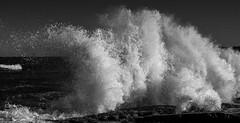 Rogue (OzzRod (on the wallaby)) Tags: sony a7rii smctakumar55mmf18 coast shoreline seascape roguewave rocks surge uprush breaking power monochrome blackandwhite merewether newcastle