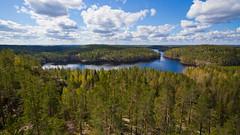 Kuutinlahti näkötornista (mustohe) Tags: 2019 finland repovedenkansallispuisto repovesinationalpark kevät spring canon canon7d maisema landscape kuutinlahti metsä forest järvi lake