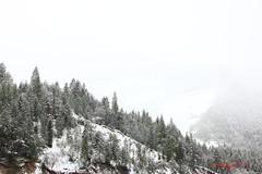 IMG_2028 (ChPflügl) Tags: mai may spring frühling italien italy europe europa chpfluegl chpflügl christian pflügl pfluegl vajont schnee snow winter is back
