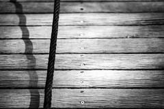 Seilschaft (chipsmitmayo) Tags: nikon f100 agfa apx 100 soligor tokina 100mm f35 macro lens fixed focus schwarzweiss blackandwhite film analog münster westfalen spielplatz playground
