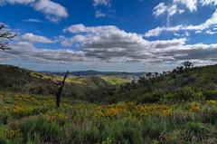 Algarve Sierra 1479 (_Rjc9666_) Tags: algarve algarvesierra backcountry colors hills landscape mountain nikond5100 portugal serraalgarvia sky tokina1224dx2 tourisme travel tourism ©ruijorge9666 sãobrásdealportel faro 2421 1479