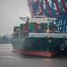 Hamburg: Tollerort Container Terminal / Thalassa Avra
