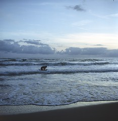 L'ombra (michele.palombi) Tags: versilia tuscany film 120mm 6x6 analogic colortec c41 negativo colore lubitel sunset