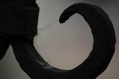IMG_4414 (seiunbellissimodeserto) Tags: venezia venice macro ragnatela spider web