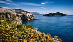 Dubrovnik at a sunny day (Vest der ute) Tags: xt20 croatia sea water flowers island buildings rocks bluesky clouds fav25