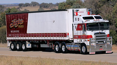 Manton Red, White & Blue (2 of 3) (Jungle Jack Movements (ferroequinologist) all righ) Tags: kurt rouse mack trident kenworth k100 t909 just time pronto express yass nsw new south wales jerrawa australia hume highway freeway haulage hp horsepower big rig haul freight cabover trucker drive transport delivery bulk lorry hgv wagon road nose semi deliver cargo vehicle load freighter ship move roll motor engine power teamster truck tractor prime mover diesel injected driver cab beast wheel double b grunt manton