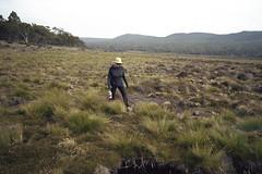 Central Highlands (nickthetasmaniac) Tags: leicam2 leica rangefinder 35mm kodak kodakportra400 portra400 voigtlander28mmultron