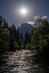 Sun Star over Half Dome (alicecahill) Tags: ca california spring landscape yosemite yosemitenationalpark nationalpark halfdome sony 2019 sun ©alicecahill