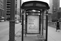 Expecting a teenager (streetravioli) Tags: street photography chicago bus stop shelter binge watching adoptuskids adopt us kids