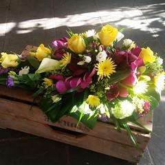 This vibrant single ended spray used Vanda orchids, yellow roses, lisianthus, carnations and liatris💝💝 . . #parsleyandsageflorist #stokeontrentflorist #vandaorchids #vandaorchid #roses #rose #lisianthus #carnations #liatris #flower_b (parsleyandsage11) Tags: flowers flowerstagram shoplocal flowerdaily florals flowergram flowerbeauties vandaorchid flowerssuperpics vandaorchids liatris parsleyandsageflorist rose carnations flowerperfection roses stokeontrentflorist lisianthus