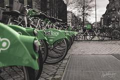 (ilja.kotelnikov) Tags: велосипед прокат велопрокат зеленый bike bicycle rental rentabike green страсбург strasbourg