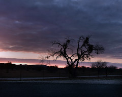 Sunset (justkim1106) Tags: sunset silhouette sky clouds texassky texassunset texashillcountry nature treesilhouette hills sunlight purple pink landscape landscapewithsunset dusk twilight