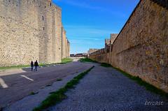 CARCASSONNE-032-LES REMPARTS-OCCITANIE-PANORAMIQUE-_DSC0471 (bercast) Tags: aude carcassonne chateau chateaumedival france lesremparts occitanie ue bc bercast lacitédecarcassonne lamuraille