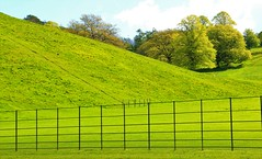Field Of Green (acwills2014) Tags: friday fencefriday fields green hills