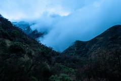 Sequoia National Park / Kings Canyon National Park Road Trip, California, USA (2010-2011) (takasphoto.com) Tags: america cropsensor d5000 dx eeuu estadosunidos fotografíadepaisaje generalgrantgrove giantforest giantsequoiatree invierno kingscanyonnationalpark kitlens landscape landscapephotography landschaftsfotografie lens mountwhitney nikkor nikkor1855mmf3556gafsdxvrlens nikon nikon1855mmf3556gafsdxvrnikkorzoomlens nikond5000 northamerica oldgrowthforest paisaje photography season sequoia sequoianationalpark sequoiaandkingscanyonnationalparks sierranevada southernsierranevada time travel travelphotography traveling travels usnationalparks usa unitedstates unitedstatesofamerica viaje visalia winter アメリカ合衆国 アメリカ合衆国国立公園 セコイア ニコン ニコンd5000 ニッコール 冬 北米 原生林 国立公園 季節 季節感 米国 美国 風景 風景写真 hume california