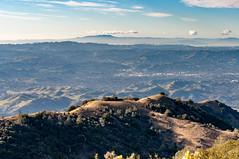 Mount Diablo Summit Hiking, Clayton, California, USA (takasphoto.com) Tags: 50mm america bayarea berkeley california californiastate clayton contracosta contracostacounty cropsensor d5000 danville diablorange eeuu eastbay estadosunidos focallength50mm fotografíadepaisaje hike hiking hikingtrail hill landscape landscapephotography landschaftsfotografie lens mountdiablo mountdiablostatepark mountain nikkor nikkor50mmf14gsicswprimeafs nikon nikond5000 norcal northamerica northerncalifornia oakland paisaje photography prime primelens sfbay sanfrancisco sanfranciscobayarea trail travel travelphotography traveling travels trekking usa unitedstates unitedstatesofamerica viaje westcoast westoakland f14 アメリカ合衆国 カリフォルニア サンフランシスコ ニコン ニコンd5000 ニッコール 加州 北カリフォルニア 北米 米国 美国 西海岸 風景 風景写真