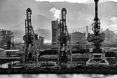 Industrial revolution. (Ian Ramsay Photographics) Tags: noumea newcaledonia dockside cranes export vessels industrial revolution heavy monochrome image raw product
