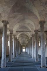 le stalle del castello (mat56.) Tags: stalle castello castle stalls vigevano pavia lombardia colonne columns prospettiva perspective antonio romei mat56 architettura architecture