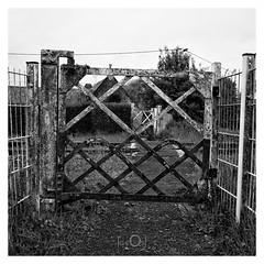 Back to no future XXVI (CrËOS Photographie) Tags: hernicourt pasdecalais france voieferrée chemindefer railway railword barrière gate abandonné abandoned