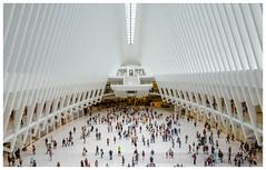 NEW YORK 2016 (regis.muno) Tags: newyork usa etatsunis ville city manhattan jersey jerseycity brooklyn oculus gare station train nikond7000 blanc
