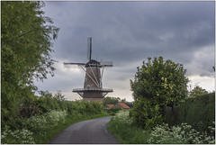 DSC01212- (imagerme) Tags: mil molen netherlands nederland borselel zeeland sgravenpolder zakvanzuidbeveland debevelanden