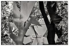 Martini 44 (butschinsky) Tags: blackandwhite blackwhite bw schwarzweisfotografie schwarzweis sw monochrom kunstimöffentlichenraum hamburg michaelwassenberg sony rx100iii rx100m3 dscrx100m3 unguessedhamburg guessedbynobody frickestrase hamburgeppendorf martini44