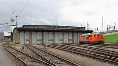 Depot F Zürich (hans.hirsch) Tags: rts depot f zürich swietelsky rail transport service baureihe 2143 diesel lok locomotive baudienst sbb infra 9281 025 2